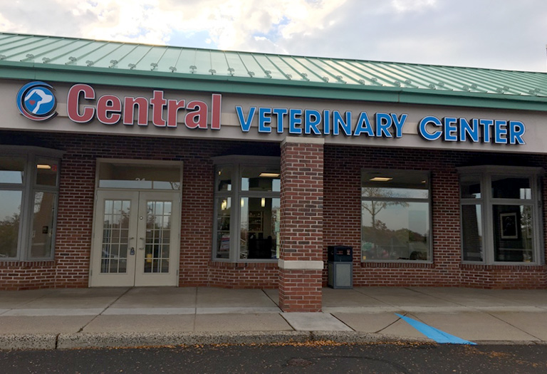 chalfont, bucks county veterinary